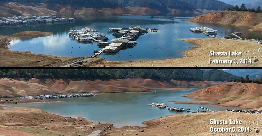 Lake Shasta evidently affected by the drought.