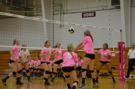 The Side-Out Foundation started Dig Pink as a way to raise awareness about breast cancer.